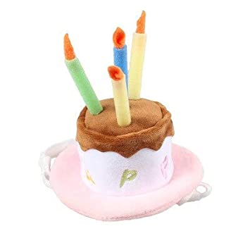 Amazon.com: VIPTRI - Gorro de cumpleaños para perro con vela ...
