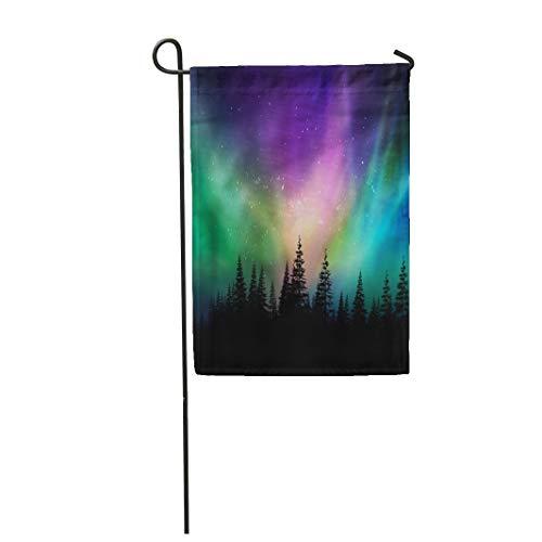 Design A Colorful Northern Lights Landscape in US - 9