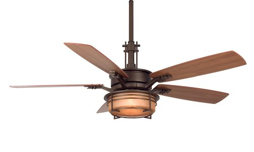 Fanimation FP5220OB Andover Ceiling Fan, Oil Rubbed Bronze Finish, 5 Cherry/Walnut Blades, Frosted Glass, Appliances for Home