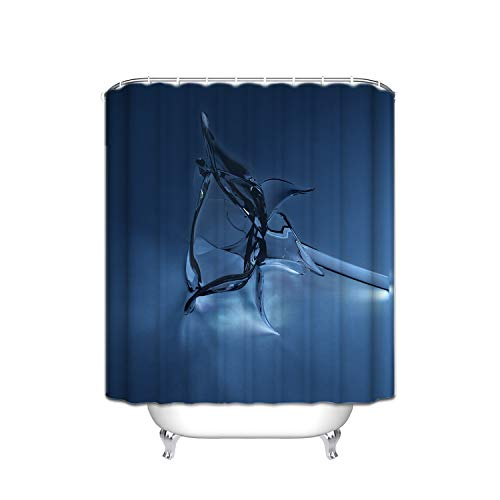 Flower Giraffe Shower Blue (Navy Blue Transparent Water Rose Flower Modern Vertical Stripe Fabric Shower Curtain, Waterproof Polyester Bathroom Curtain with 12 Hooks, Mildew Resistant, 48 X 72 inch)