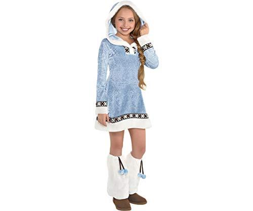 Amscan Girls Arctic Princess Costume - Medium (8-10), Multicolor