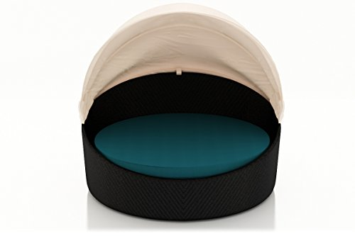 Harmonia Living Wink Canopy Patio Daybed in Spectrum Peacock