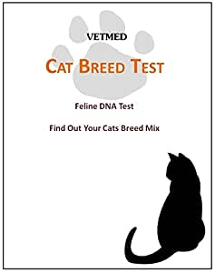 Amazon Com Cat Dna Breed Identification Test Find Out