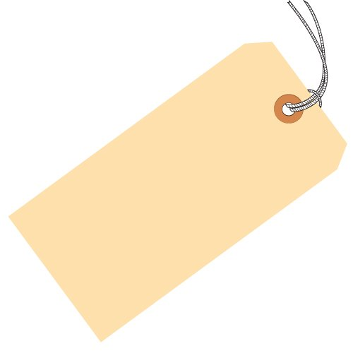 Aviditi G30012 10 Point Cardstock Pre-Strung Shipping Tag, 2-3/4