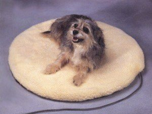 Allied Precision Heated Pet Bed - Allied Precision ALLIEDPR12PBL Large Heated Pet Bed by Allied Precision Industries