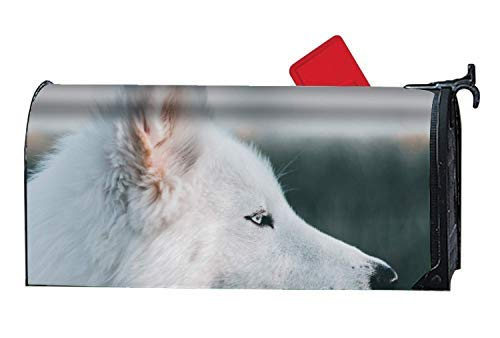 (Tollyee White Dog Personalized Mailbox Cover Magnetic Fits-Sized Mailboxes All Weather Vinyl Magnetic Mailbox Cover 6.5