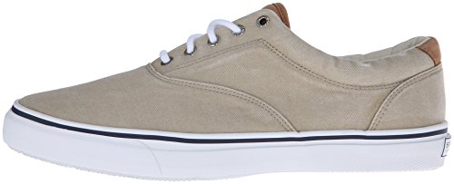 Sperry Top-Sider Men's Salt Washed Striper LL CVO Laceless,Chino,10.5 M US by Sperry Top-Sider (Image #5)