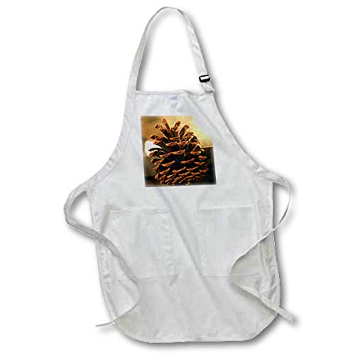 3dRose Stamp City - Still Life - A Close up Still Life Photograph of a Single Pinecone. - Full Length Apron with Pockets 22w x 30l (apr_302861_1) ()