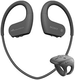 Headphone Integrated NW WS625 Domestic products%E3%80%91 product image