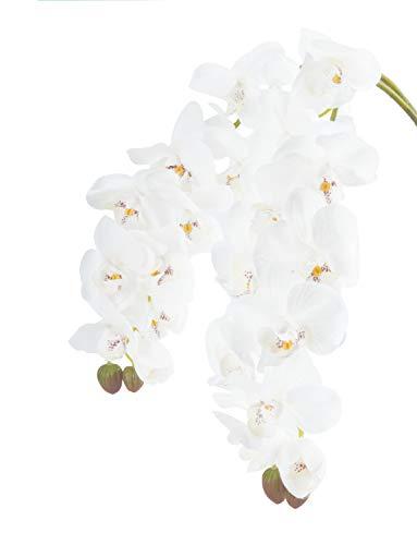 - Molliy 2pcs White Orchids Artificial Flowers Stem Real Touch Phalaenopsis Flower Arrangement 2PCS