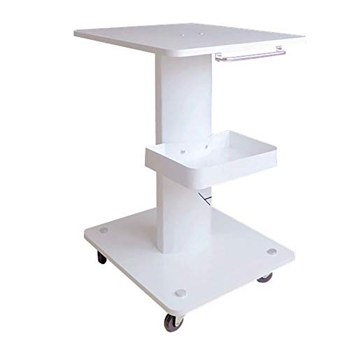 Salon Trolley YXX- White Cart with Metal Tray and Wheels, Samll Instrument Trolley for Medical/Tattoo/Beauty Spa, Wood Tabletop