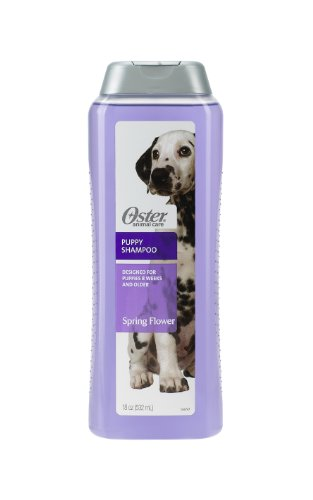 oster canine - 8
