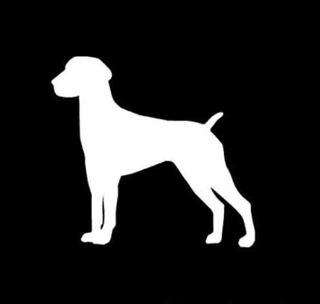 German Short Haired Pointer Dog Decal Sticker, Die cut vinyl decal for windows, cars, trucks, tool boxes, laptops, MacBook - virtually any hard, smooth surface