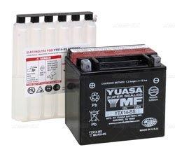Yuasa YTX14-BS YUAM3RH4S ()
