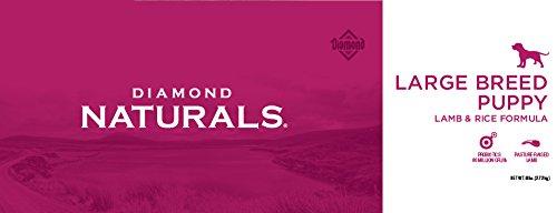 Amazon.com: Diamond Naturals Recipe de carne real para perro ...