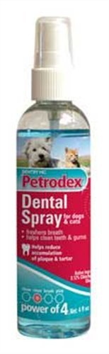 Petrodex Dental Rinse Dog and Cat, 4-Ounce, My Pet Supplies
