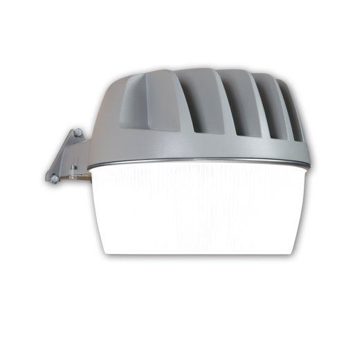 Cheap ALL-PRO Outdoor Security AL2550LPCGY 2500-Lumen LED Area and Wall Light, Gray