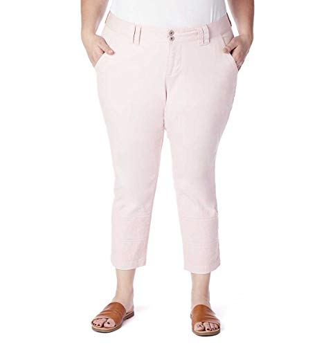 Jag Jeans Women's Plus Size Flora Chino Crop, Conch Shell, 22W
