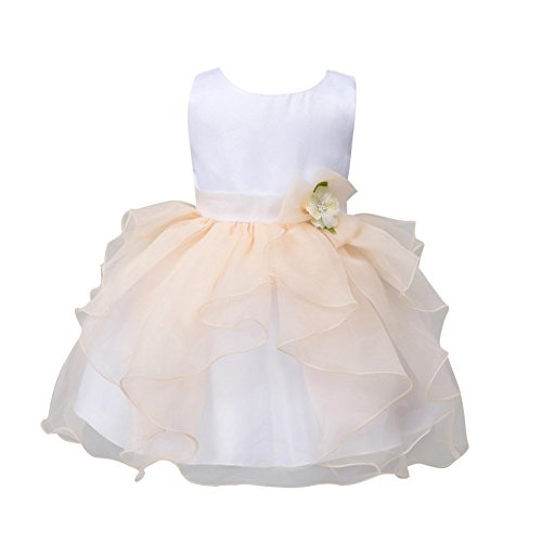 Zhengpin Flower Girl Baby Toddler Clothes Princess Wedding Party Pageant Fancy Tutu Dress (M(6-12Months), (Easy Fancy Dress Costumes)