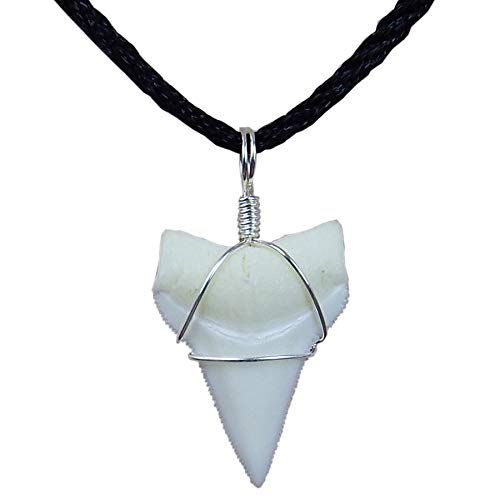 GemShark Real Shark Tooth Necklace White Tip Mako Tiger Shark Sterling Silver Charm Pendant for Boys Girls (0.8 inch White Tip)