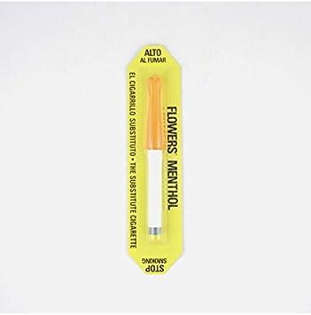 Flower 0017919 - Cigarrillo electrónico mentolado, 2 piezas