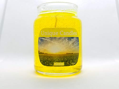 Awaken - Long Lasting Scented Gel Candle ()
