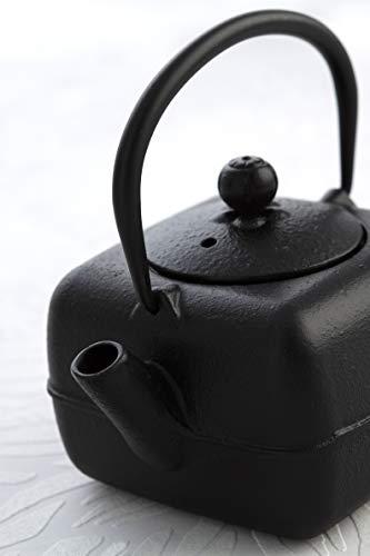Bidasoa Tropiko Tetera de hierro fundido con filtro de acero ...