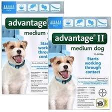 12 Month Advantage Flea Control - Advantage II For Medium Dogs 11-20 lbs, 12 Pack