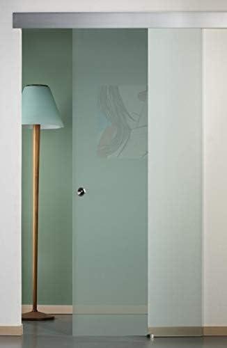 Puerta corredera exterior de cristal satinado 90 x 210: Amazon.es ...