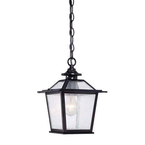 Acclaim 9706BK Salem Collection 1-Light Outdoor Light Fixture Hanging Lantern, Matte Black