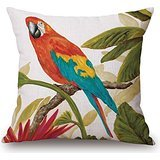 alphadecor-bird-pillowcover-16-x-16-inches-40-by-40-cm-best-choice-for-outdoorgirlshimrelativesloung