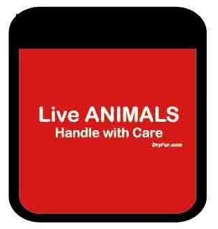 Pet Carrier Comfort Grips - Live Animals (Red)