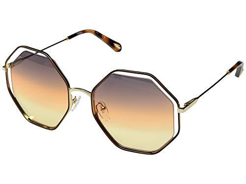 Chloe Women's Poppy - CE132SL Havana/Grey/Orange/Yellow One Size - Orange Havana Sunglasses
