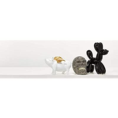 Interior Illusions Plus ii00390sm Coin Bank, Black: Home & Kitchen