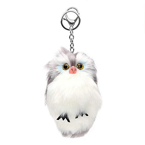 Owl Nest Camera - 2