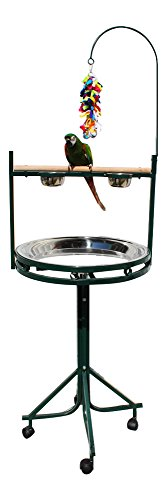 - Birds LOVE Stainless Steel Tray, Non-Toxic, Powder Coated Parrot Playstand with Perch, Toy Hook and Stainless Steel Cups - Green