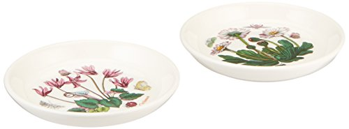 Portmeirion Botanic Garden Coasters/Sweet Dishes, Set of 2 (Garden Sweet Portmeirion Botanic)