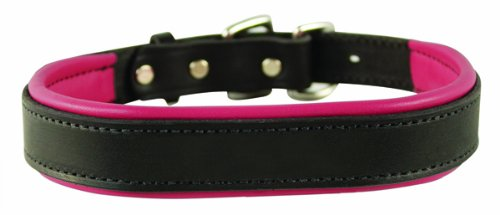 Perri's Padded Leather Dog Collar, Black/Pink, Large1.25' x 25' fitting dogs with 16 - 20' necks