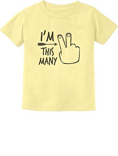 Birthday T-shirt Yellow - 2nd Bday Two Year Old Second Birthday Gift Toddler Kids T-Shirt 2T Banana
