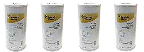 Pentek 655005-43 Iron Reduction Reserve Filter Systems Inc.