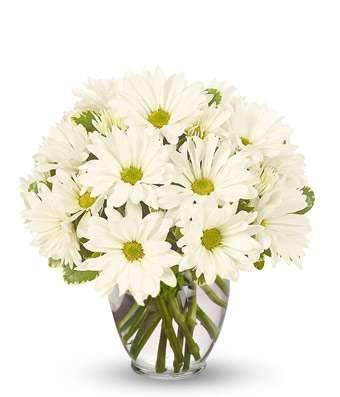 Amazon Wished Well Bouquet