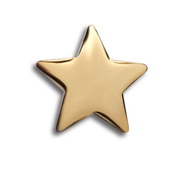 Gold Star Lapel Pin (Gold Star Lapel Pins - Set of 10 Workplace & Classroom Achievement Pins)