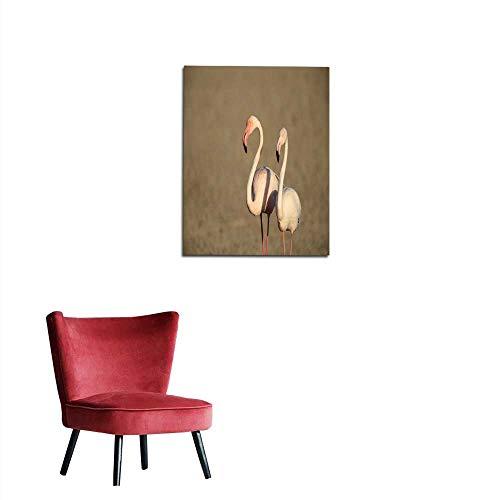 longbuyer Wall Sticker Decals Greater Flamingo (Phoenicopterus roseus) in Dubai United Arab Emirates Mural 24