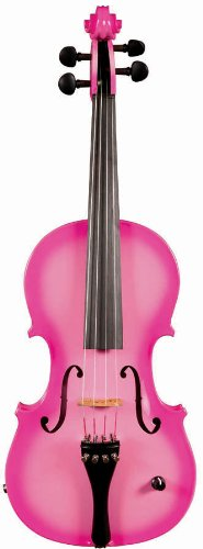 Barcus Berry, 4-String Violin (BAR-AEP) (Best Violin Shop In New York)