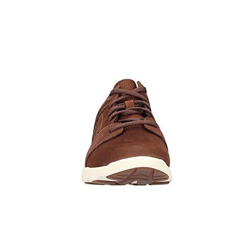 Brown Flyroam Timberland Flyroam Timberland Chaussure Chaussure Homme TYv1t