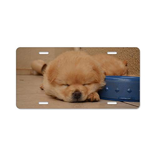 Puppy Dog Animal Home,Bathroom and Bar Wall Decor Car Vehicle License Plate Metal Tin Sign Plaque