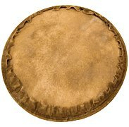 Natural Unbleached Goatskin Djembe Head - 13 inch. - 13 inch. - Tycoon Percussion ()