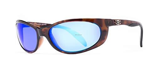 99c9025f5c Calcutta SK1BMTORT Smoker Sunglasses available in Qatar
