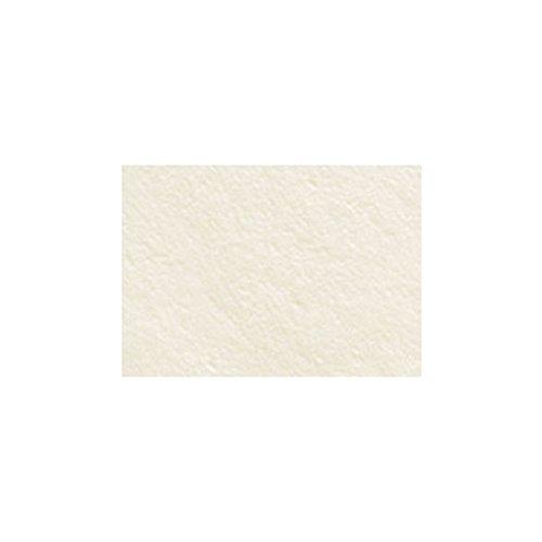 Stonehenge Paper Warm White 90Lb 50X10Yd Roll by Stonehenge