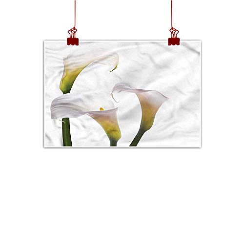 Sunset glow Wall Painting Prints Flower,Calla Lilies Romantic 36